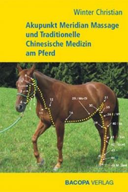 AMM am Pferd