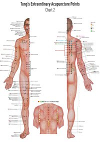 Set Chart 1+2 TUNG's Extraordinary Acupuncture Points on the regular channels