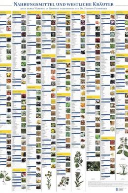 Plakat Nahrungsmittel und westliche Kräuter mit 224 Abbildungen