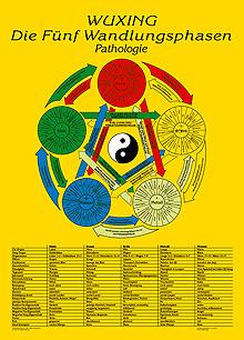 Lehrtafel Pathologie, Wuxing Die Fünf Wandlungsphasen Poster