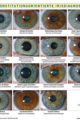 A4 Tafel Konstitutionsorientierte Irisdiagnose