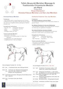 Feuer Element 2. Kreislauf-Sexus und San Jiao MeridianAMM und TCM am Pferd