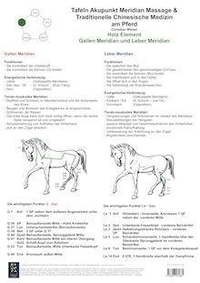 Holz Element. Gallen und Leber Meridian